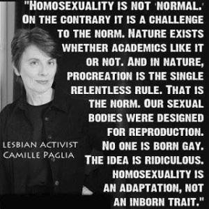 homosexual-Camille Paglia