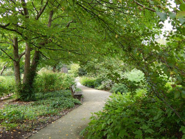 """""""A Walk In Paradise Garden"""""""