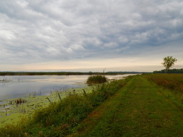 Horicon Marsh hiking trail ©Ann Johnson Kingdom Venturers
