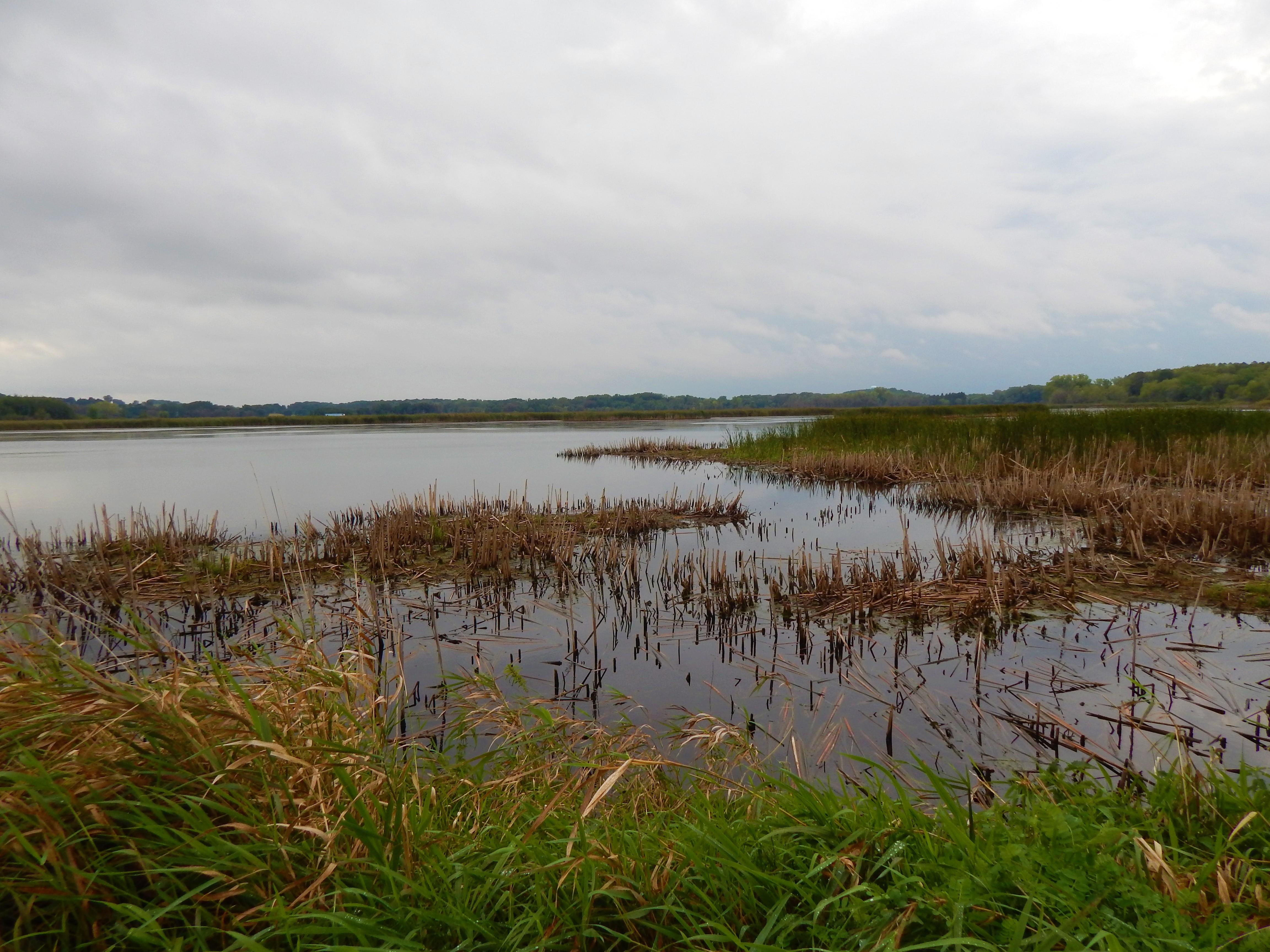 Horicon Marsh facing SW ©Ann Johnson Kingdom Venturers