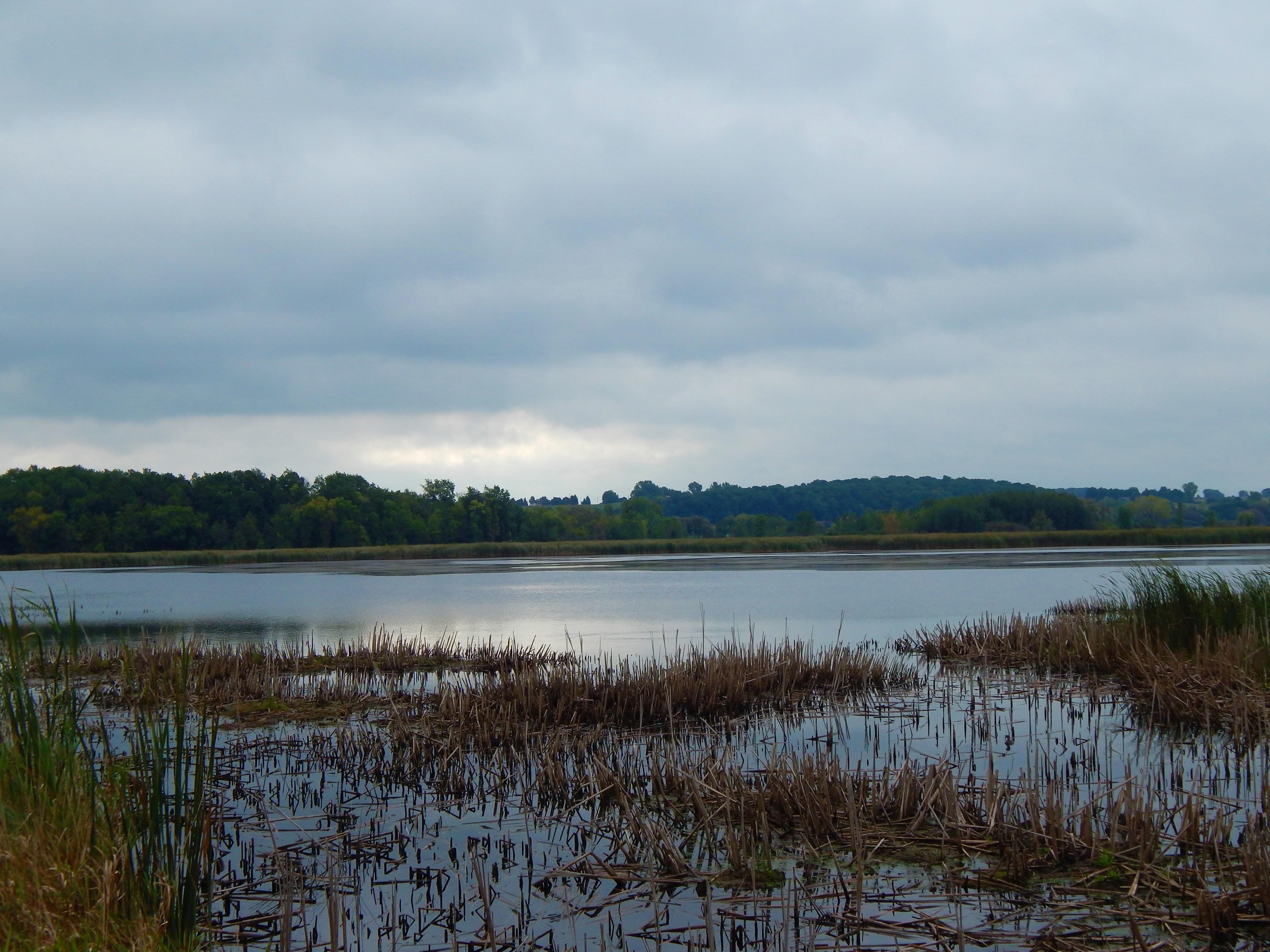 Horicon Marsh 7:30 AM ©Ann Johnson Kingdom Venturers